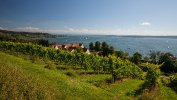 Bodensee-2016-003